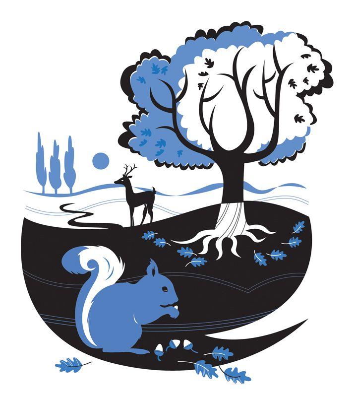 #joannakerr #newdivision #illustration #flatgraphic #line  #decorative #squirrel #nature #trees #deer
