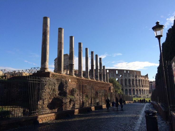 Coliseo desde el foro romano. Roma, Italia.