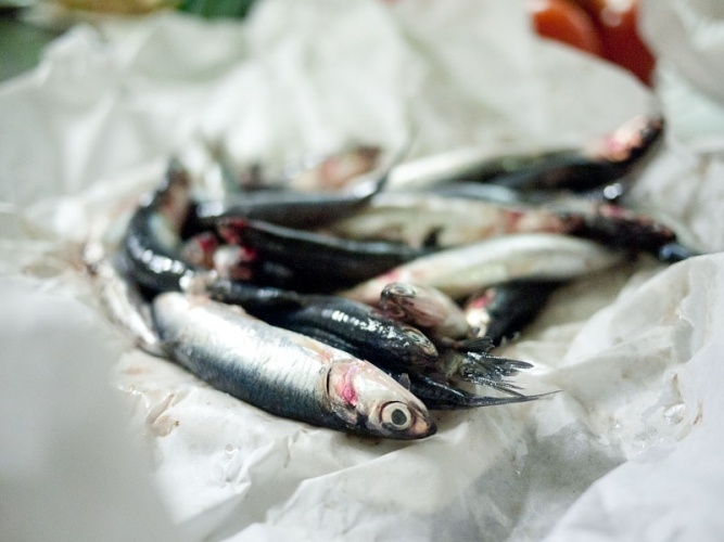 anchovies: cooking classes with San Sebastián Food