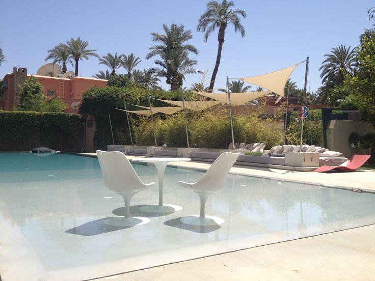 Ideas de paisajismo de exterior piscina estilo moderno for Paisajismo para piscinas
