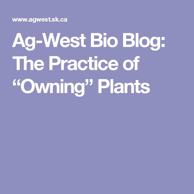 "Ag-West Bio Blog: The Practice of ""Owning"" Plants"