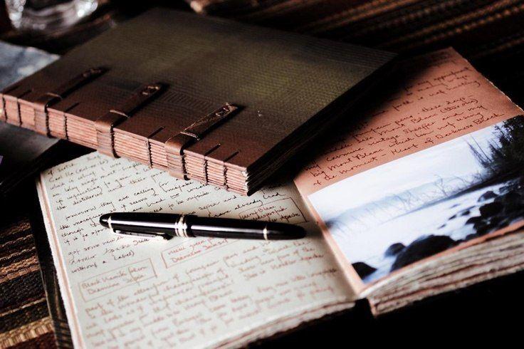 виды дневников картинки нашем