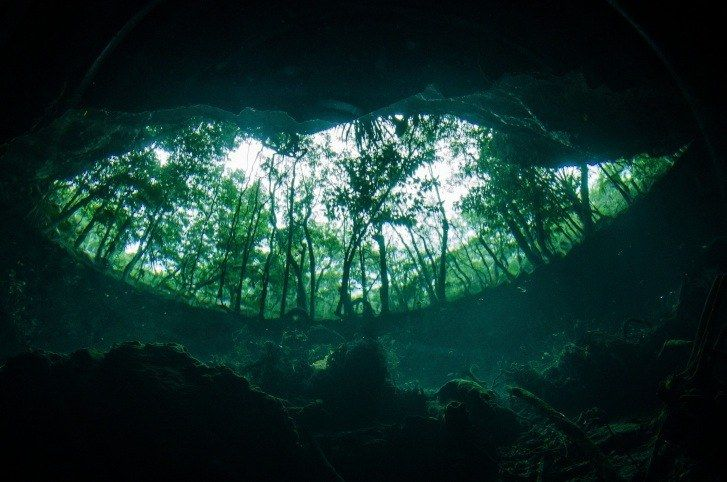 Wetter is always better! Check out the beautiful and mysterious underwater attractions when you VISIT FLORIDA.