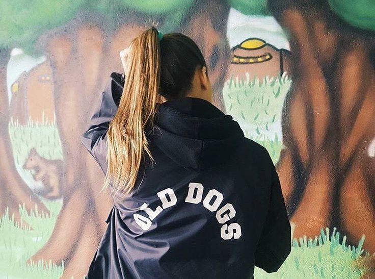 Cortavientos ODC  www.olddogs.es  . Ya disponible en @fimsbury  En colores: negro rojo amarillo. .  #olddogs #cortavientos #cazadora #streetwear  #girl #hypebeast #vigo #galicia #doggie #dogtown #odcfam