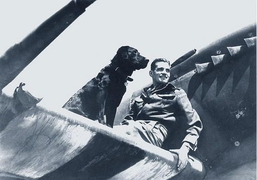 """Post-Battle of Britain RAF Fighter Command ace James """"Johnnie"""" Johnson and his friend, Sally, on the wing of his Spitfire, Normandy, Autumn 1944. Johnson was credited with 34 kills. He ended the war as a Wing Commander, and continued in the RAF, serving in the Korean War and going on to further command duties. He retired in 1966 (as Air Vice-Marshal) and died of natural causes in 2001, aged 85."""