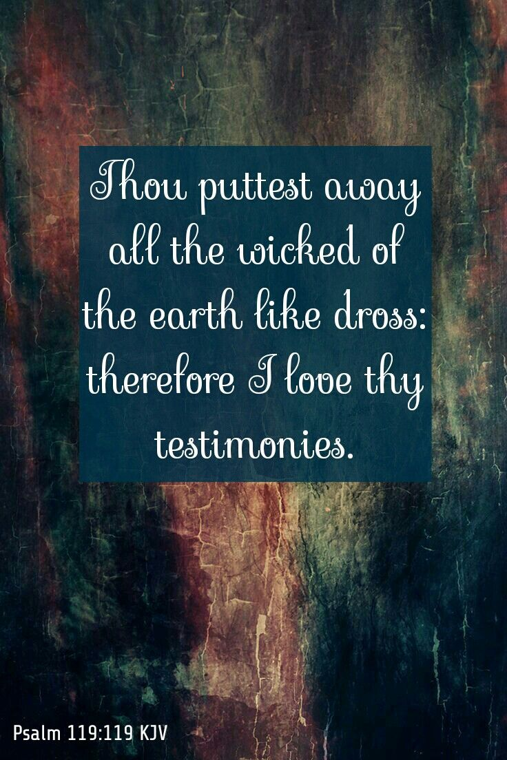 Psalm 119:119 KJV