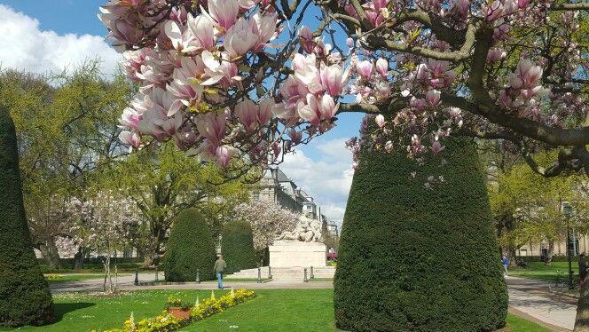 Le printemps à Strasbourg