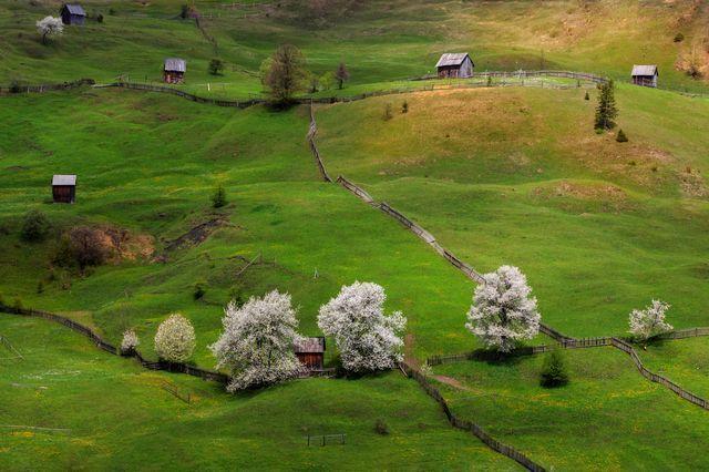 【家 住宅 House】 ルーマニアの春