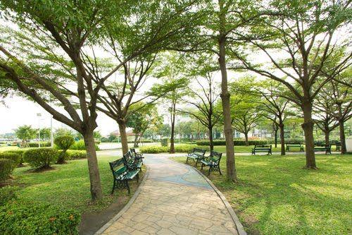 Dự án Nine South Estates mang giá trị gia tăng tốt cho huyện Nhà Bè