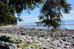 China Beach, Vancouver Island: See 18 reviews, articles, and 6 photos of China Beach, ranked No.288 on TripAdvisor among 728 attractions in Vancouver Island.
