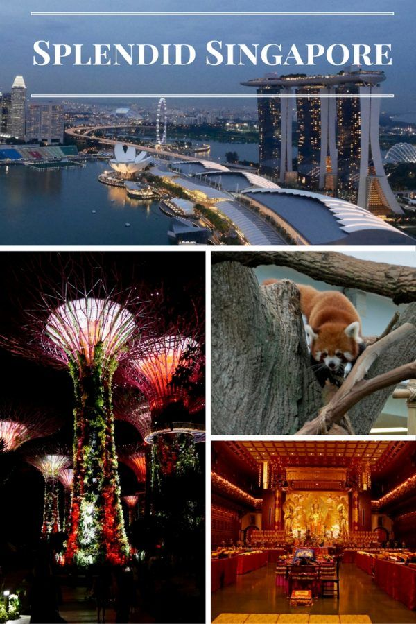 Splendid Singapore - a return to a country I last visited over fifty years ago.  What has changed?  This is a country which almost didn't exist in 1965 - the transition from third world Country to major Asian economic power is almost unbelievable.