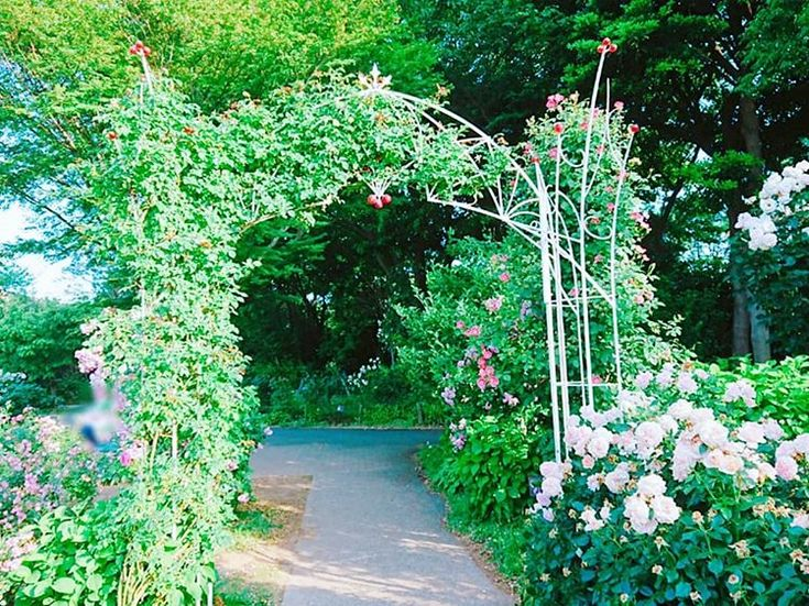 [New] The 10 Best Garden Ideas Today (with Pictures) –    . . #バラ園 #バラ… – Garden Ideas