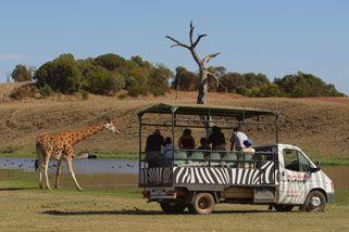 Werribee Zoo - Open Vehicle Adventure.  Victoria, Australia.