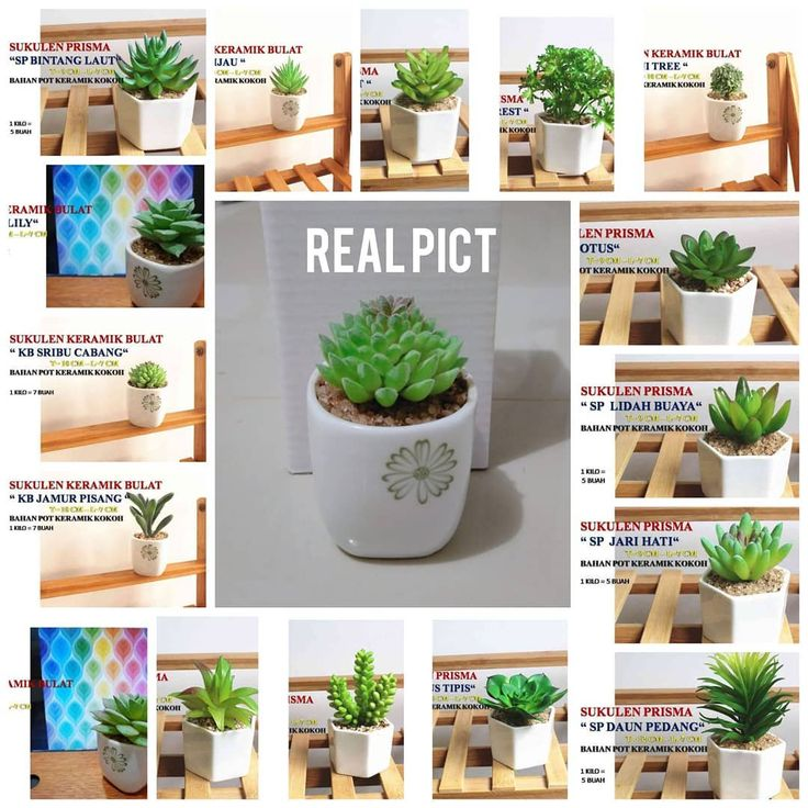 [New] The 10 Best Home Decor (with Pictures) Harga 35rb