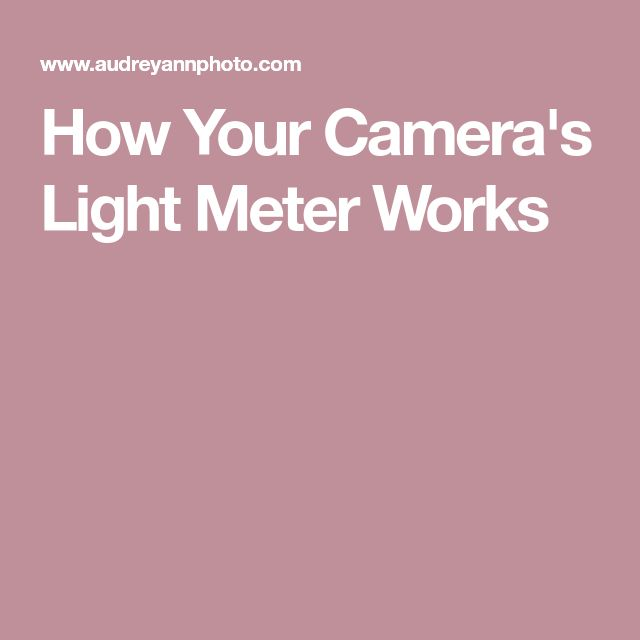 How Your Camera's Light Meter Works
