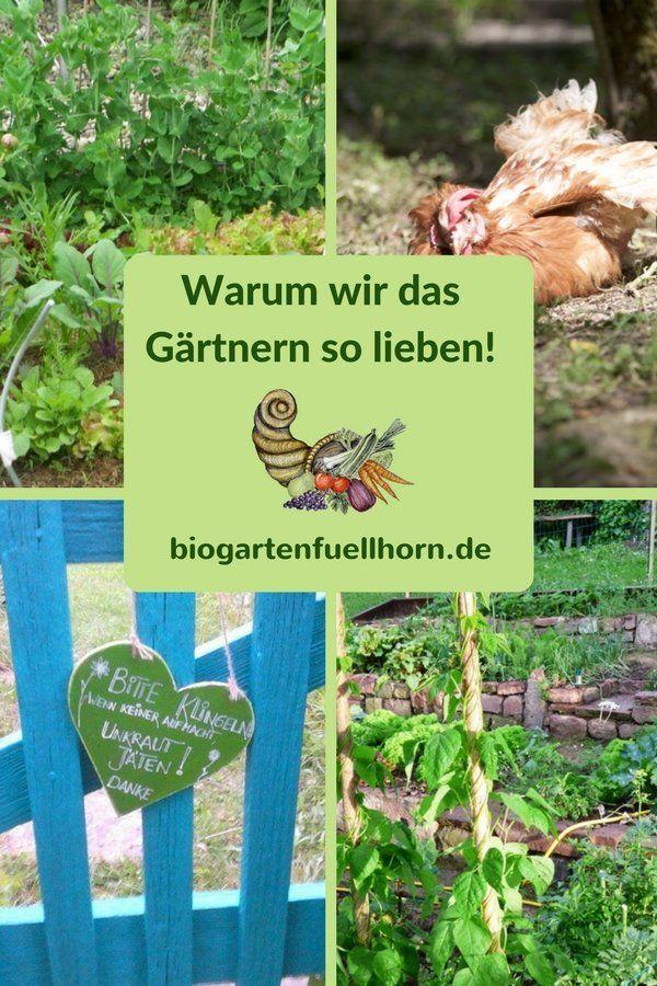 Warum Wir Das Gartnern So Lieben Biogarten Fullhorn Garten Biogarten Gemuseanbau