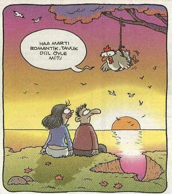 Haa martı romantik, tavuk diil öyle mi?.! #karikatür #mizah #matrak #komik #espri