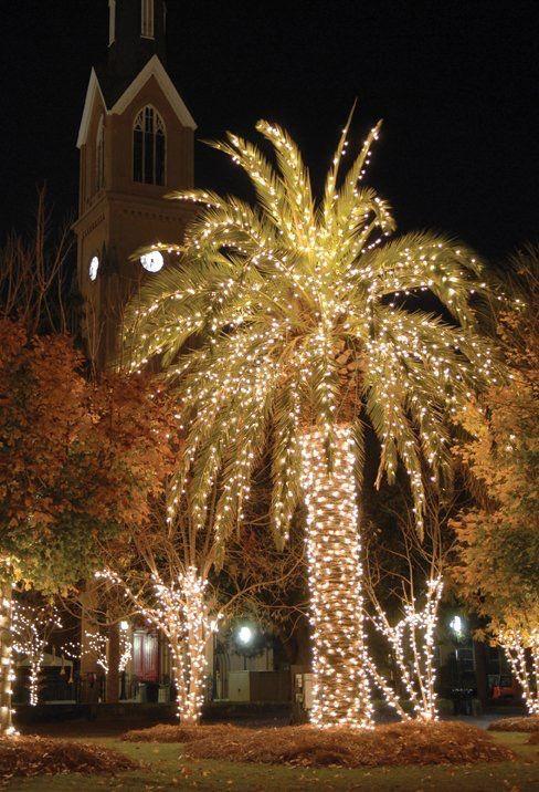 177 Best Charleston Christmas Images On Pinterest Merry  - Christmas Lights In Sc