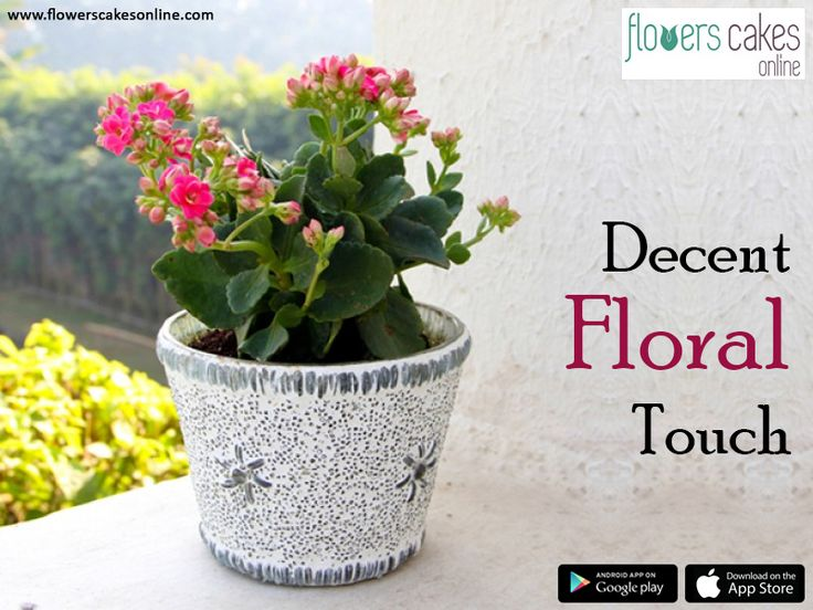 Shop gift items online from #FlowersCakesOnline. A way to express all your love & affection by sending this exclusive Gift hamper online. #SendGiftHampersToIndia  Visit: http://www.flowerscakesonline.com/hampers.php
