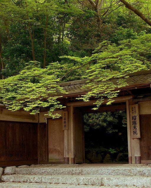 新緑 - 瑠璃光院 / Rurikou-in Komyo-ji Temple by Active-U on Flickr.