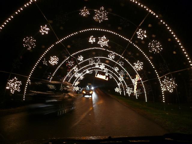 38 best Oglebay Park images on Pinterest | Wheeling, West virginia ...