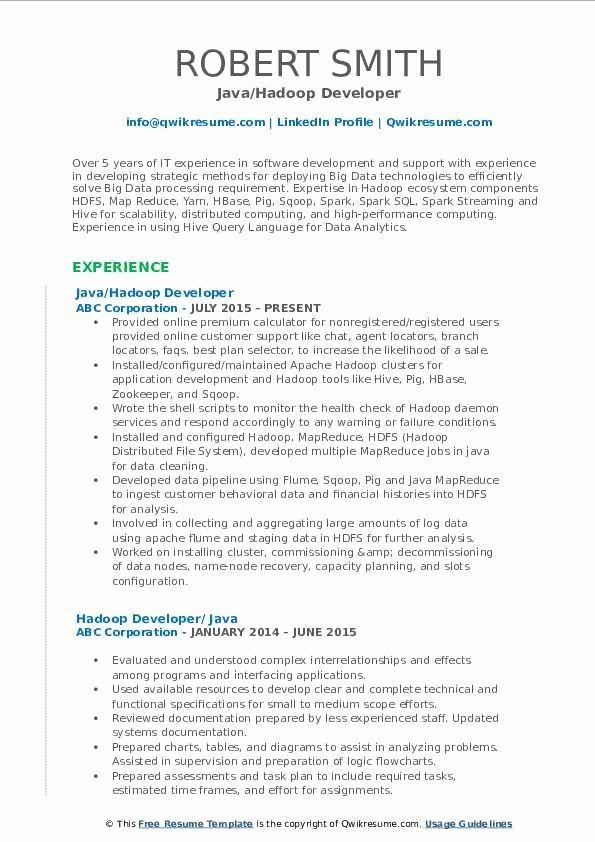 Entry Level Sql Developer Resume Beautiful Hadoop Developer Resume Samples Sales Resume Examples Marketing Resume Resume Examples