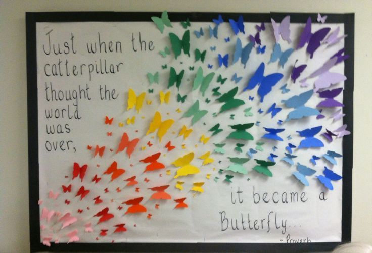 """My butterfly bulletin board at the nursing home. Our theme is """"Spread Your Wings"""""""