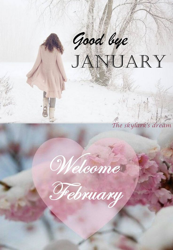 Goodbye January...Welcome February! ❤