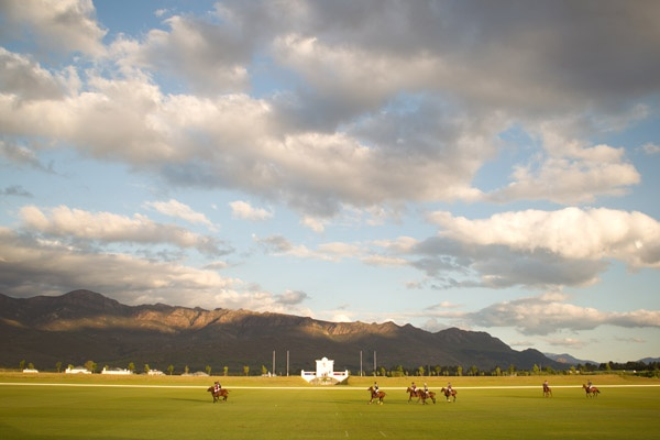 Photographic Venue - Events - horses on the polo field @valdevieestate