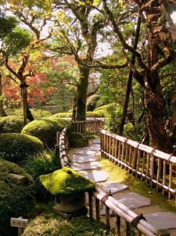 Captivating Beautiful Asian Garden Plants