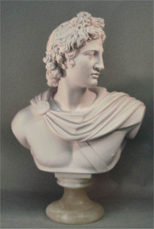 Apollo Belvedere Bust Marble Sculpture Large
