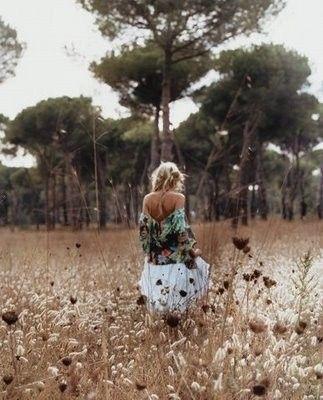meadow wanderer