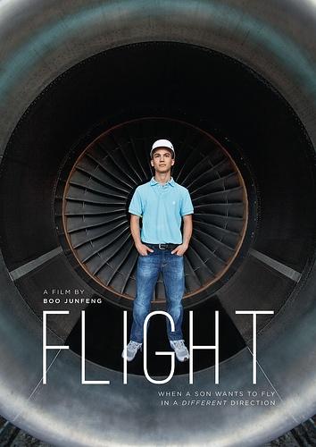 singapore - flight - boo junfeng