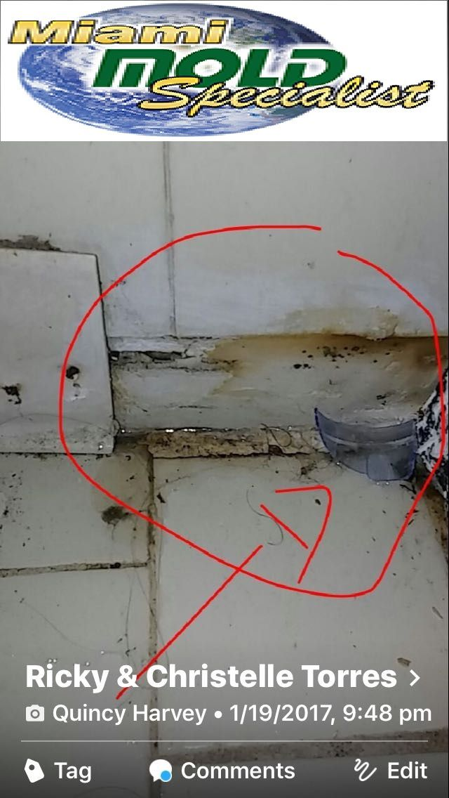If you believe you are being exposed to mold, make sure you immediately contact the professionals at Miami Mold Specialists who are #licensed and #certified in #mold #remediation, #mold_removal, #mold_inspection, #mold_testing and #mold_restoration.