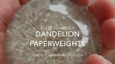 How to Make a Dandelion Paperweight