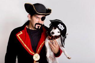 Pet Insurance Quotes Blog: Cheap Pet Insurance Doesn't Mean Good Pet Insuranc...