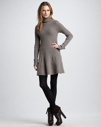 Autumn Cashmere Flared Turtleneck Dress