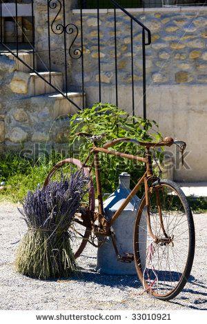 43 Best All Lavender And Bikes Images On Pinterest Lavender
