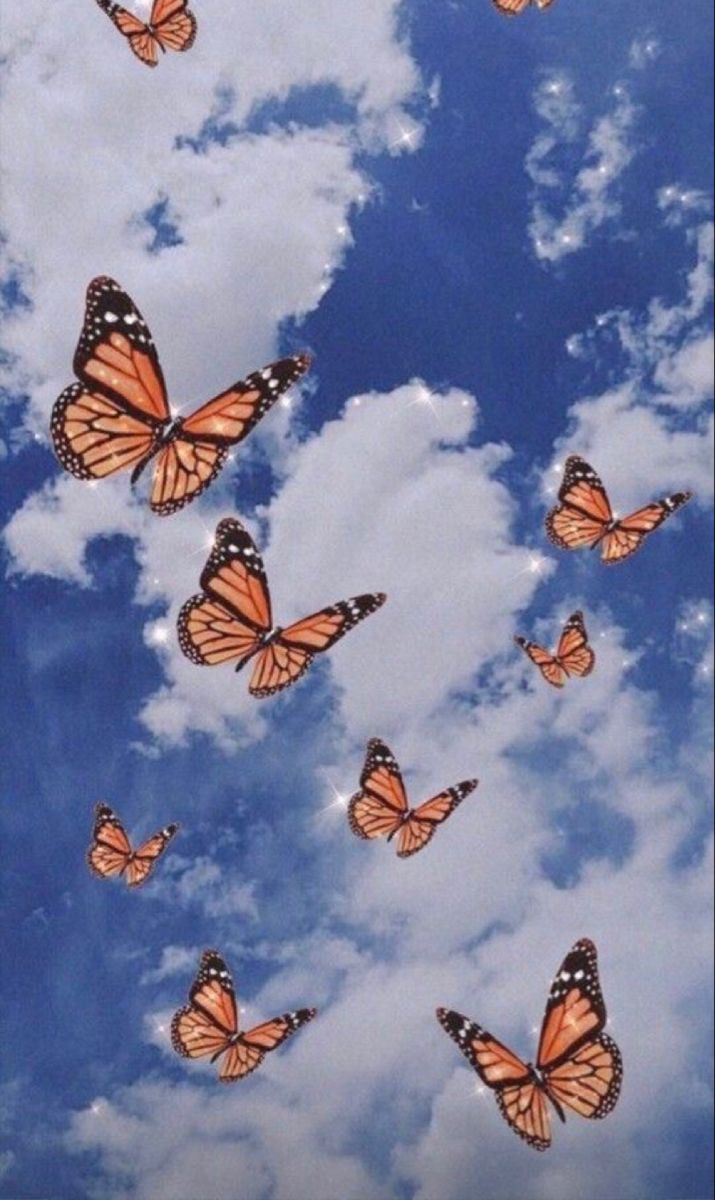 Pin by Guadalupe on pics in 2020   Butterfly wallpaper ...