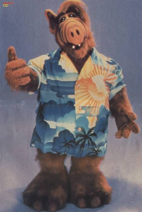alf. For all of you who have no idea who he is