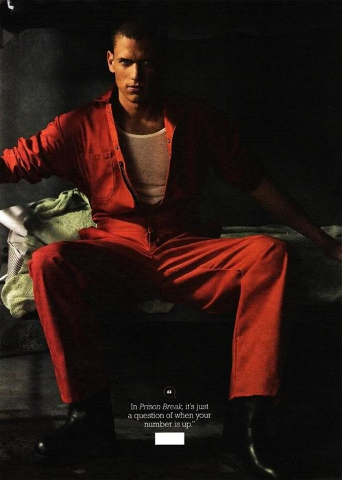 Wentworth miller nude pics foto 228