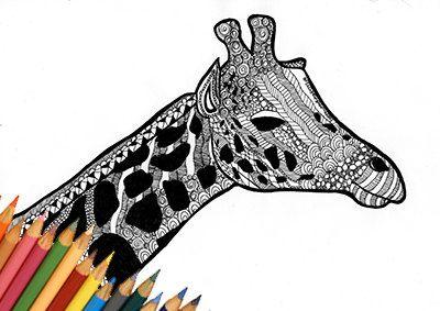 Giraffa pagina da colorare, giraffa disegno da colorare, animale giraffa, pagina…