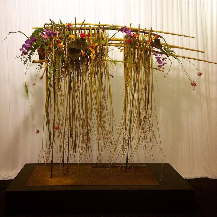 Design and Nature - Line Work - Toowoomba Carnival of Flowers 2013 - Bart Hassam Floral Design