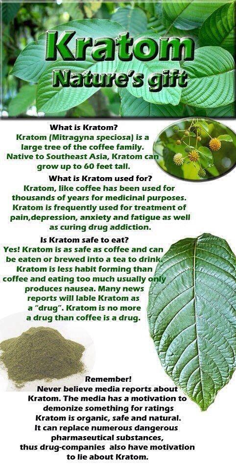 #Kratom #facts #naturesgift