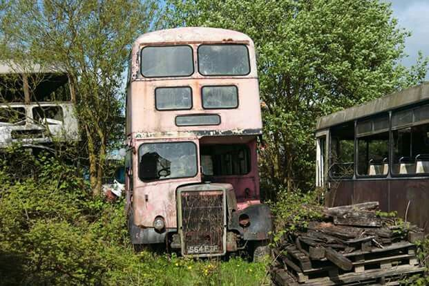 The End 657 Leyland PD3 rotting away.
