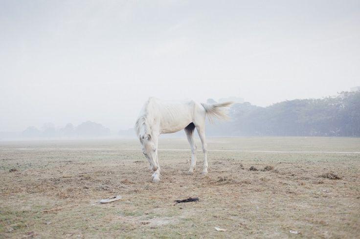 Саркер Протик — один из представителей современной фотографии из Бангладеша, лектор Южно-Азиатского института медиа Pathshala. Предпочитает работать в сезон дождей, создавая минималистичные серии снимков с уклоном на документальный нарратив.