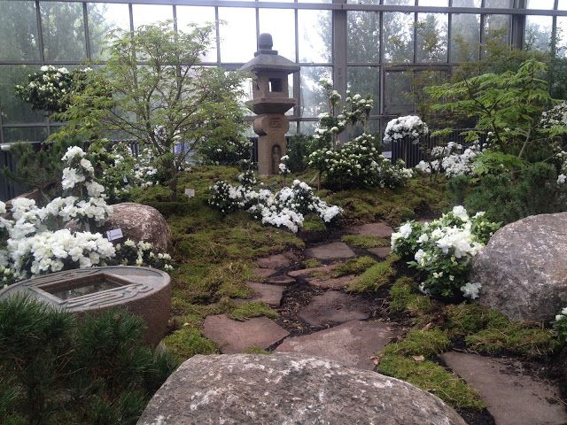Frühling japanischer Garten - Palmengarten Frankfurt #weißerGarten