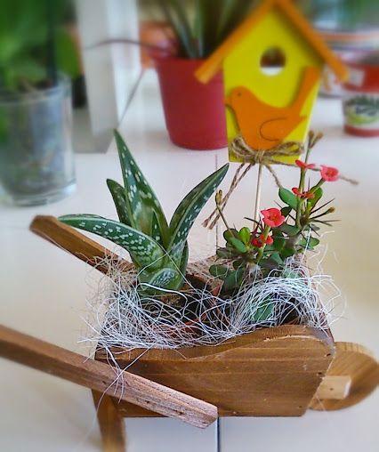 Plantas y ramos de flores para regalar a hombres la - Ramos para regalar ...