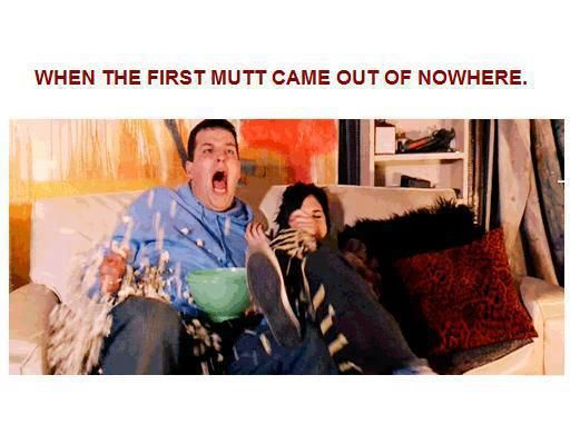 During The Hunger Games XD Haha