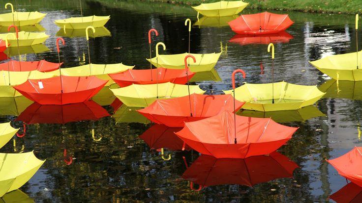 Pictures for Desktop: umbrella wallpaper - umbrella category